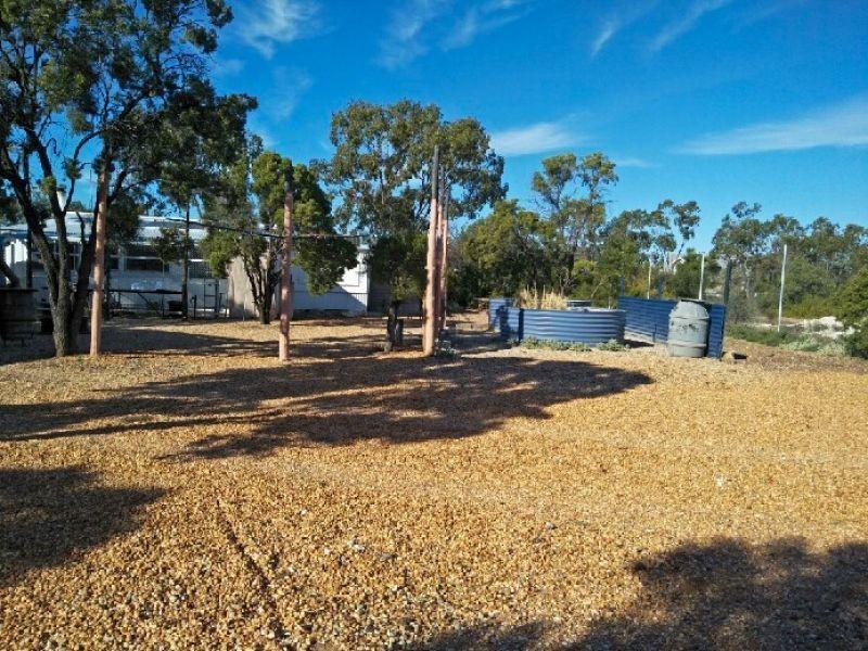 WLL16365 New Chum, Lightning Ridge NSW 2834