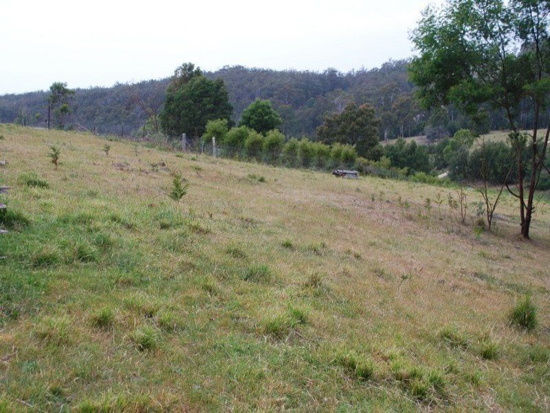 20 Belmont Drive, Bald Hills NSW 2549