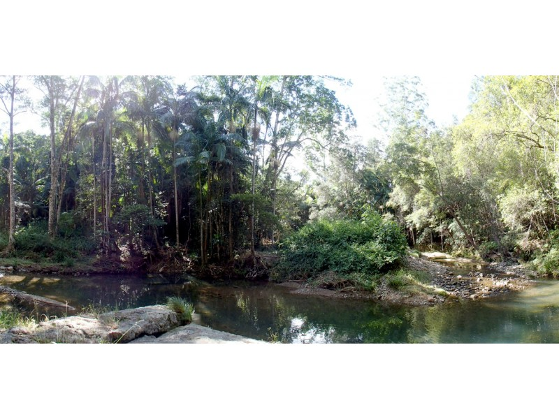 Numinbah NSW 2484