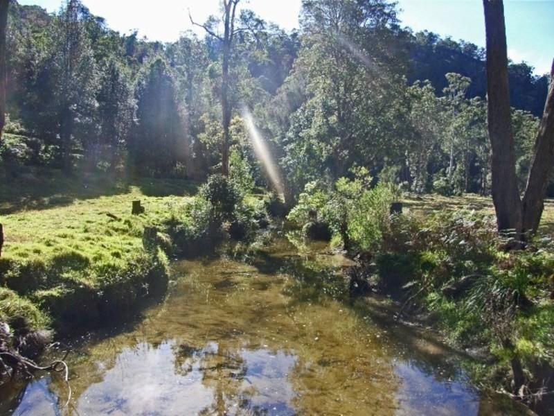 Lower Mangrove NSW 2250