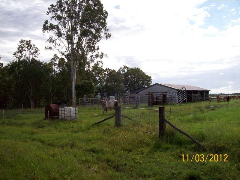 213 Masottis Road, Homebush QLD 4740