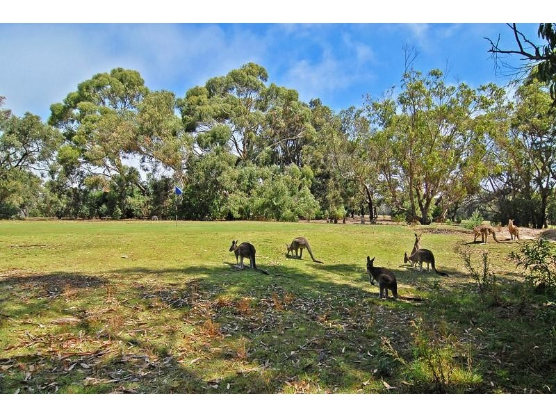 59A Noble Street, Anglesea VIC 3230
