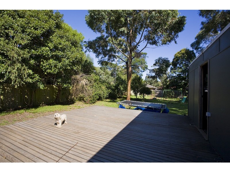 51 Camp Road, Anglesea VIC 3230