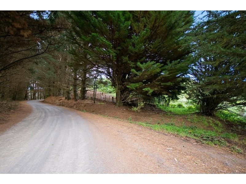 700 Wild Dog Road, Apollo Bay VIC 3233