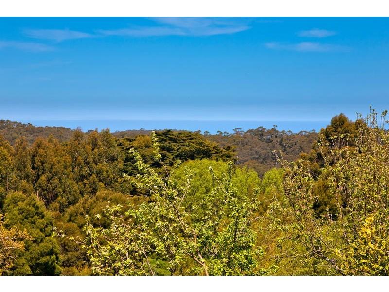 855 Great Ocean Road (Marengo), Apollo Bay VIC 3233