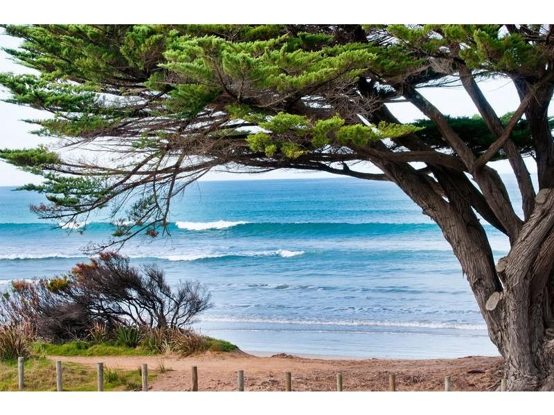 1/273 Great Ocean Road, Apollo Bay VIC 3233