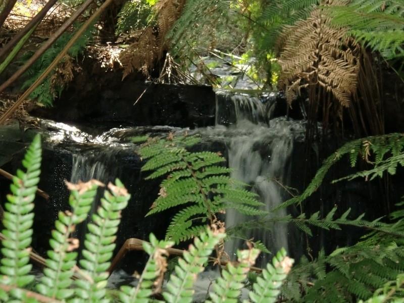 540 Skenes Creek Road, Apollo Bay VIC 3233
