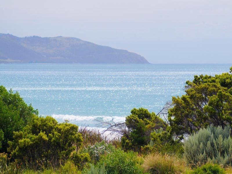 295 Great Ocean Road, Apollo Bay VIC 3233
