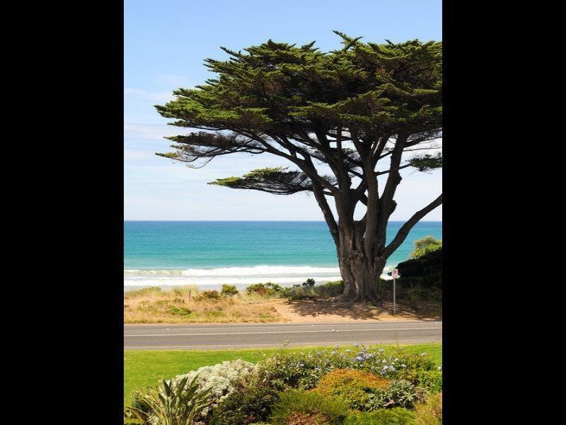 245 Great Ocean Road, Apollo Bay VIC 3233