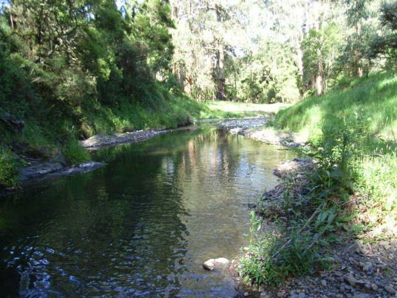 935 Barham River Road, Apollo Bay VIC 3233