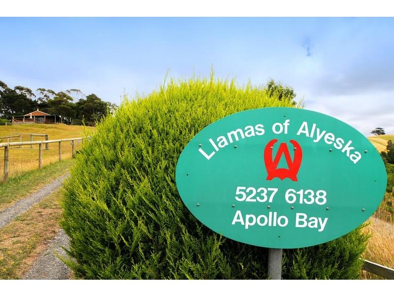 355  Killala Road, Apollo Bay VIC 3233