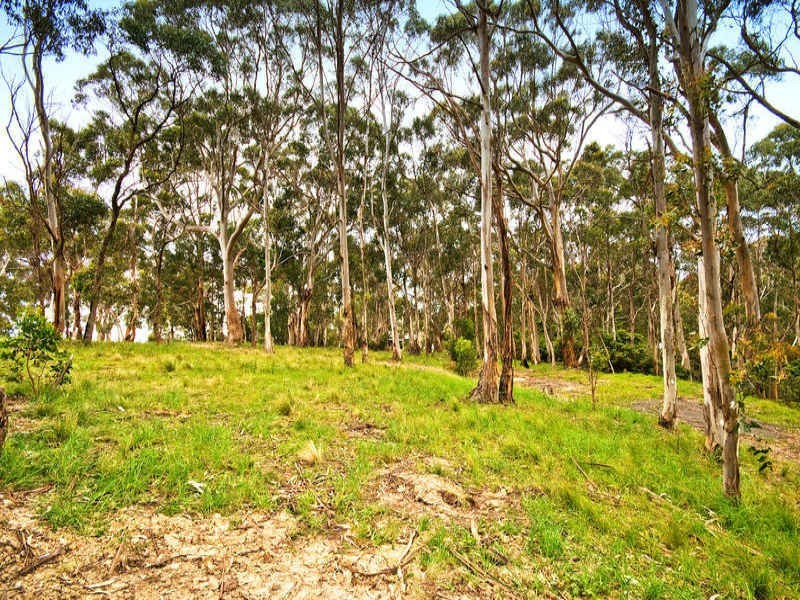 75 Old Coach Road, Apollo Bay VIC 3233