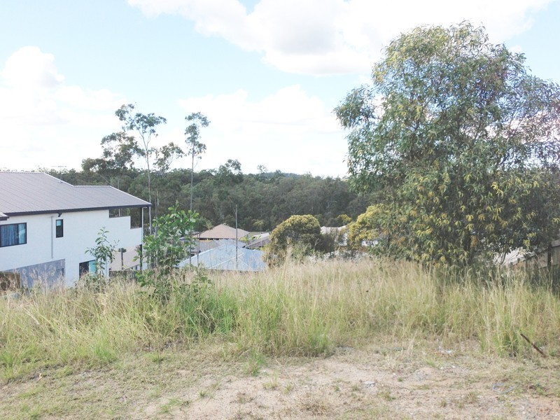14 Aristotle Ave, Augustine Heights QLD 4300