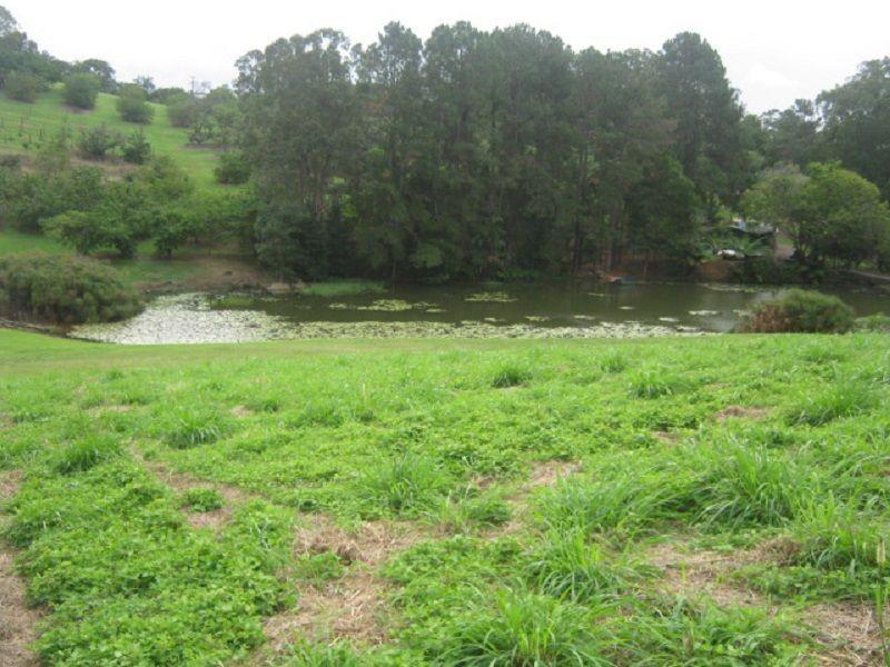204 Coes Creek Road, Coes Creek QLD 4560