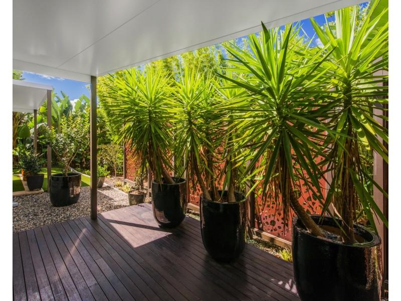 4 Conestoga Way, Upper Coomera QLD 4209