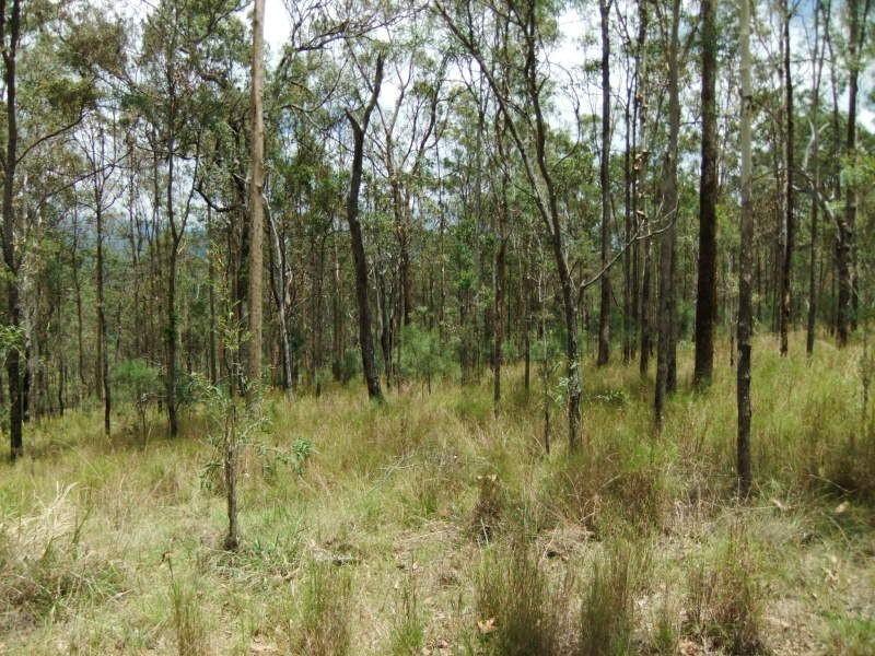 Moogerah QLD 4309