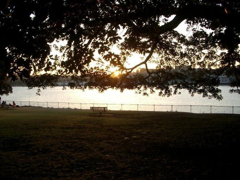 16/501 Glebe Point Road, Glebe NSW 2037