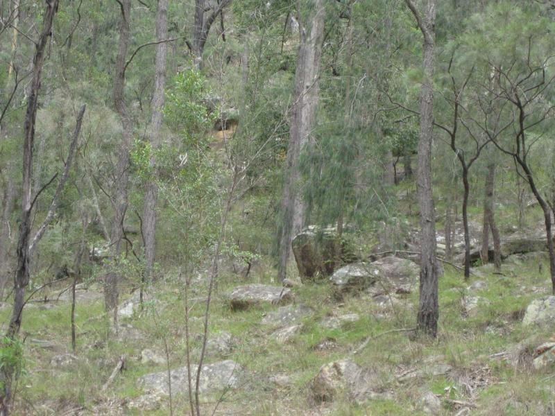 Broke NSW 2330