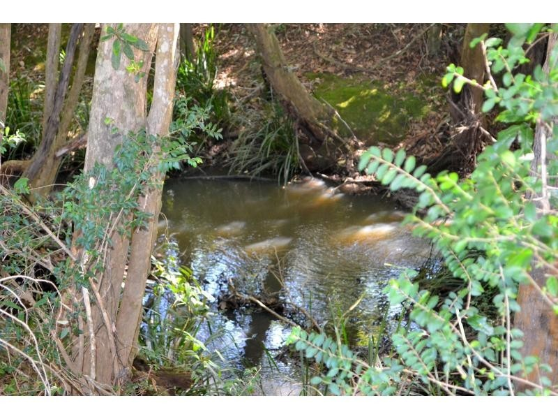 1106 Bago Road, Herons Creek NSW 2443