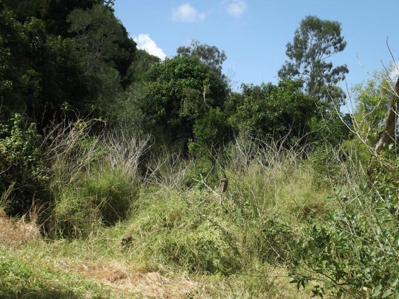 L11 Walla Island Road, Wallaville QLD 4671