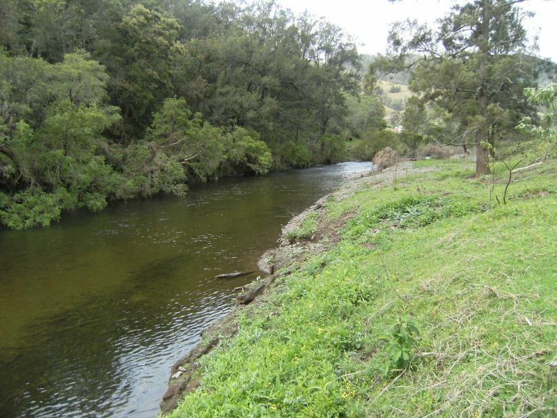 Bretti NSW 2422