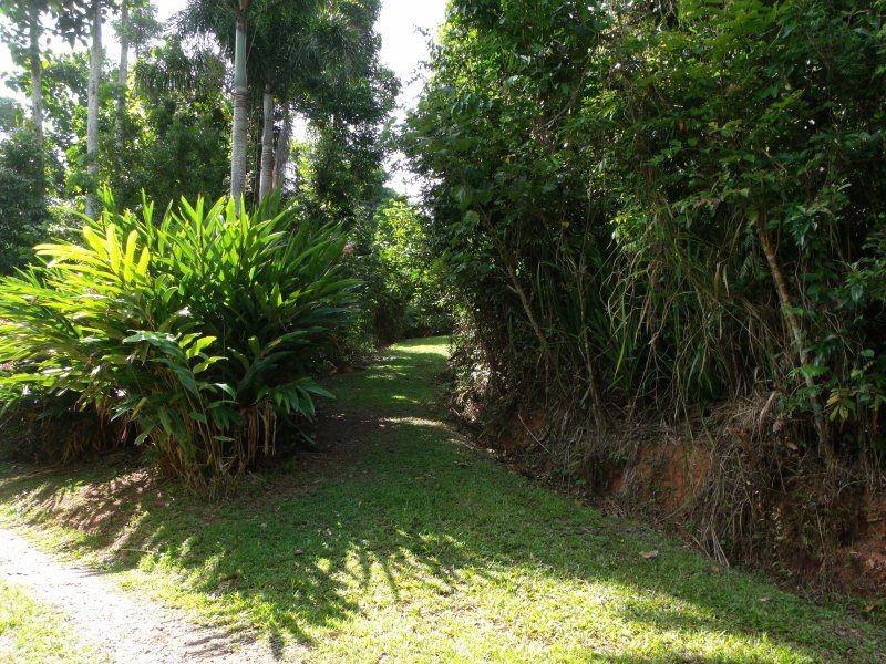 5/627 Bingil Bay Road, Bingil Bay QLD 4852