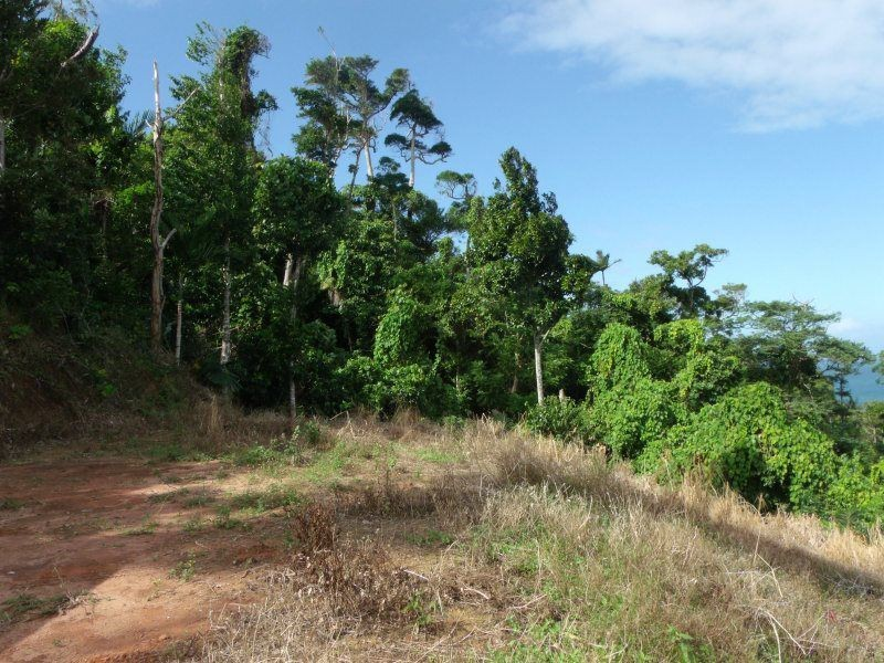 Lot 3 Plantation Drive, Bingil Bay QLD 4852