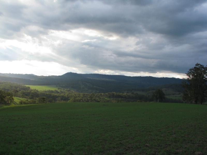 Legume NSW 2476