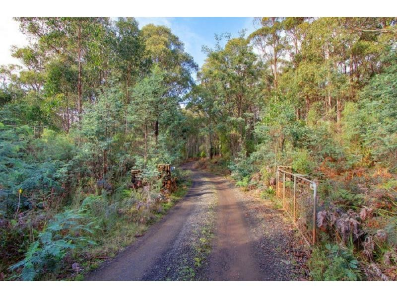 550 Porters Bridge Road, Reedy Marsh TAS 7304