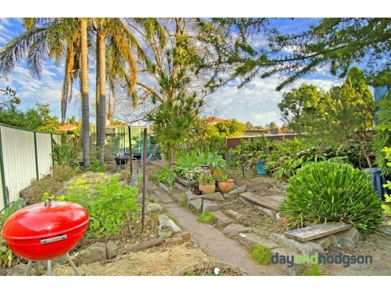 16 Frederick Street, Campsie NSW 2194