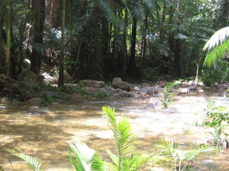 1200 Calen – Mt Charlton Road, Calen QLD 4798