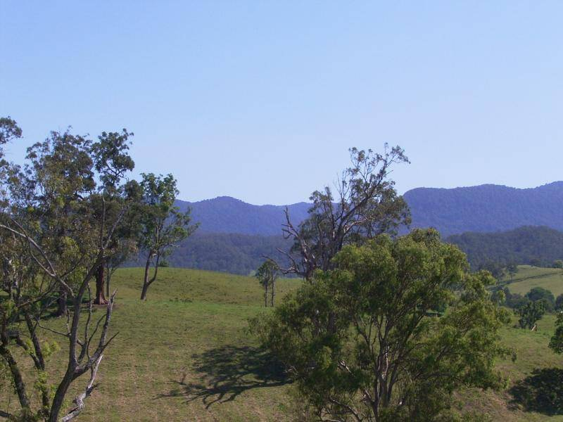 LOT 10 Collins Valley Road, Afterlee NSW 2474