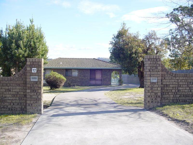 12A Munje Street, Bald Hills NSW 2549