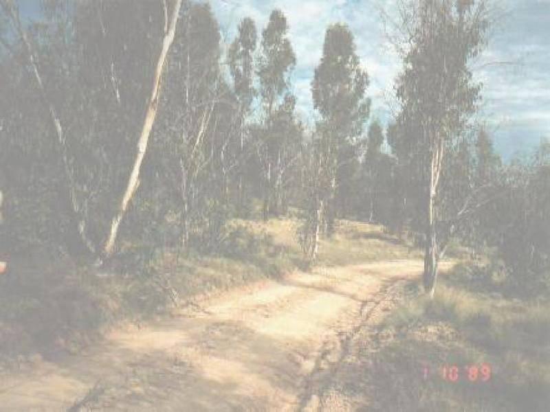 2008 Jerangle Road, Arable NSW 2630