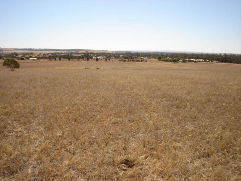 Lot 389 Brogan Road JAMESTOWN 5491, Jamestown SA 5491