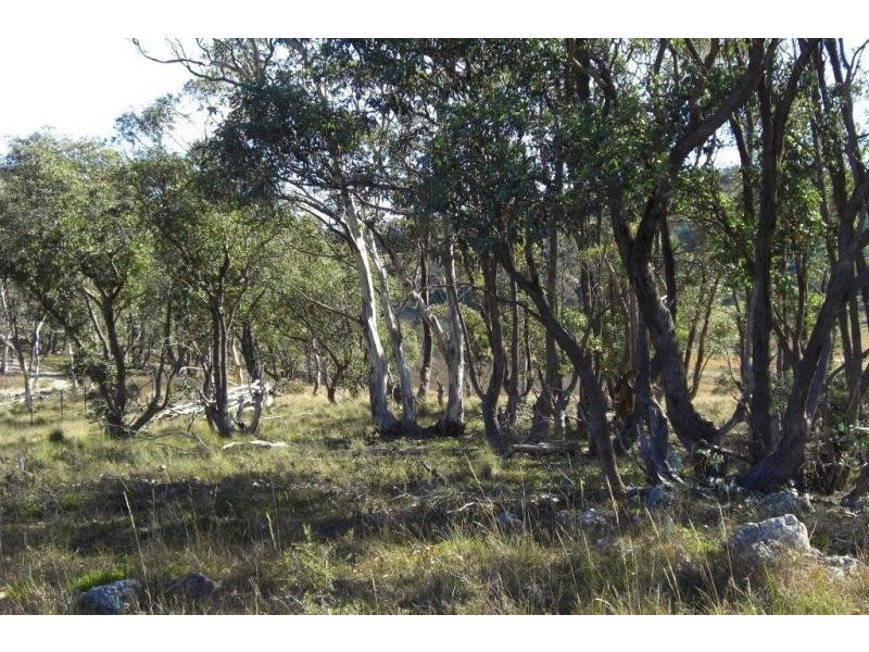 3364 Krawarree Road, Braidwood NSW 2622