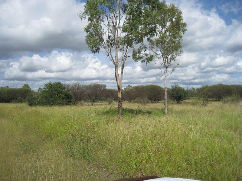 14 Perks Road, Gumlu QLD 4805