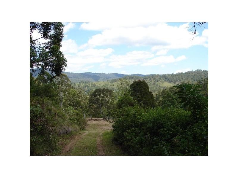 146 Tree Fern Road, Cougal NSW 2474