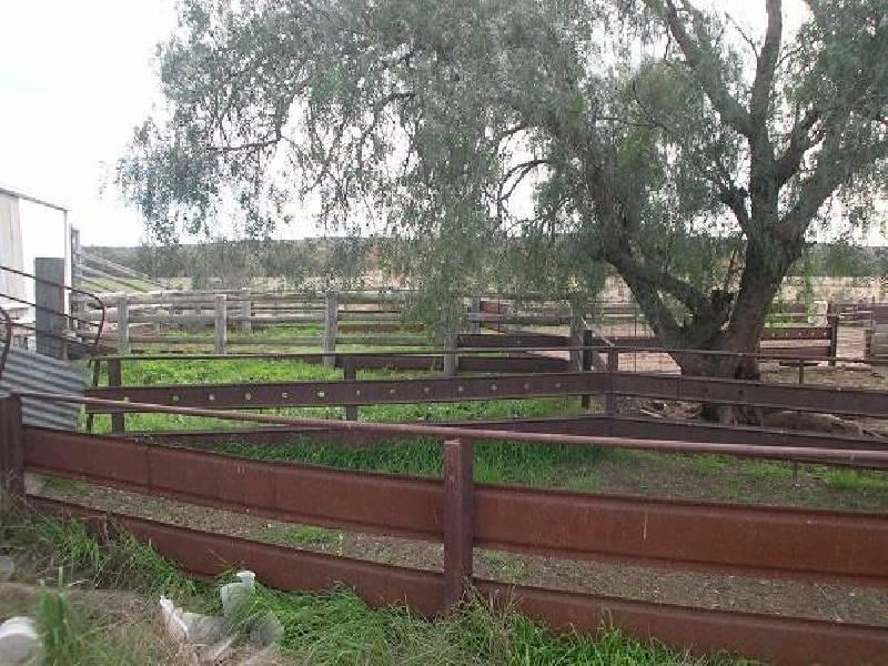 Armatree NSW 2831