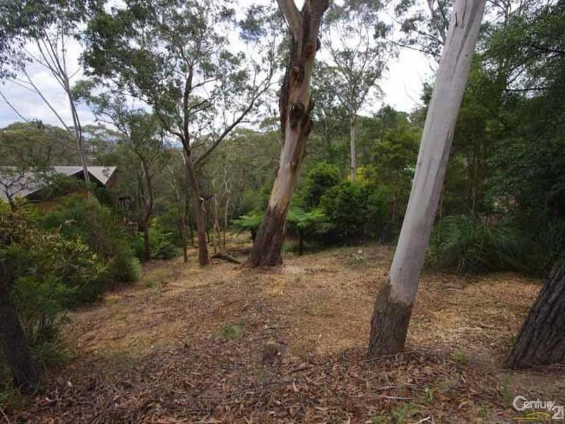 182 Victoria St, Mount Victoria NSW 2786