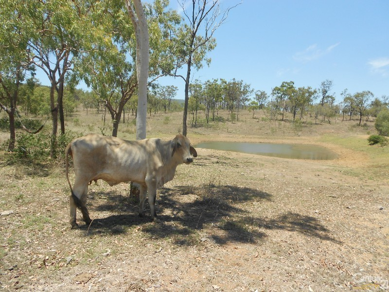 208 Hunter Valley, Morinish QLD 4702