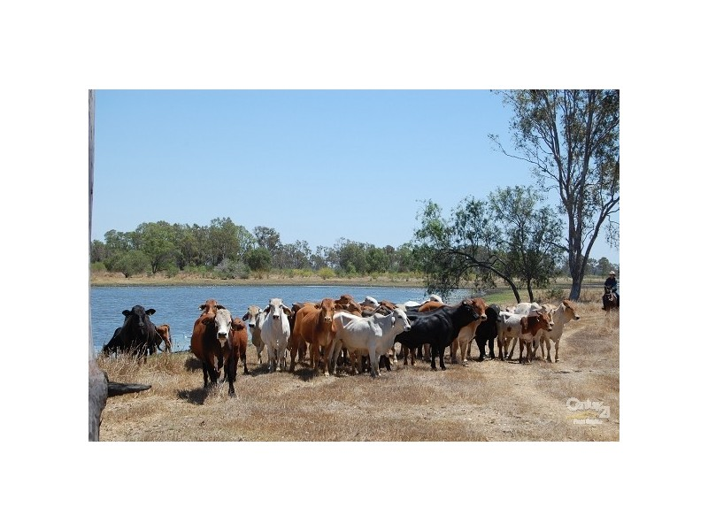 Lot 248 Fogarty Road, Fairy Bower QLD 4700