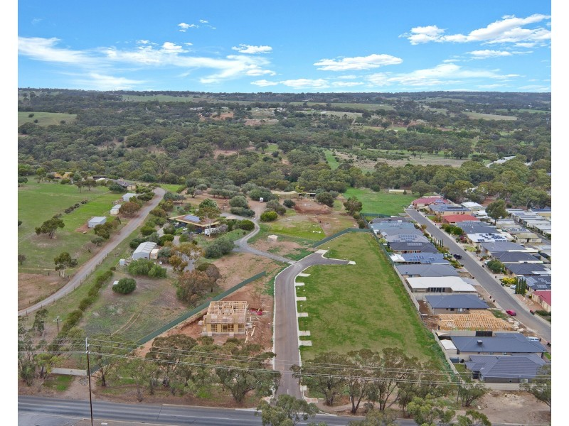 6 Pitcher Place, Woodcroft SA 5162