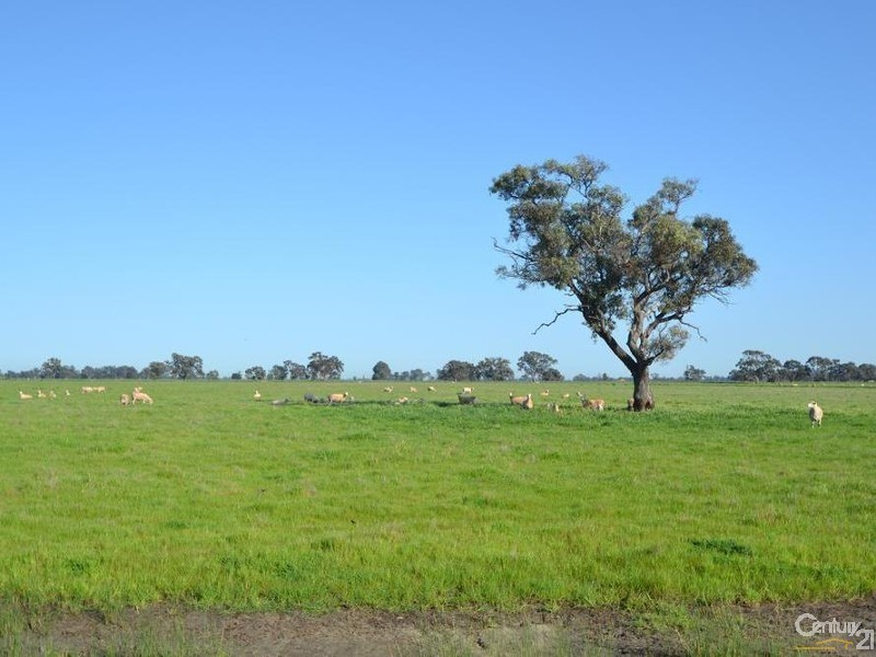 RMB 185 Hetherington Road, Deniliquin NSW 2710
