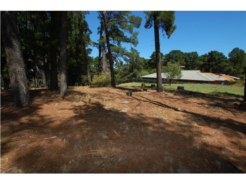 Lot 304 Pine Drive, Aberfoyle Park SA 5159