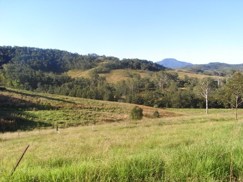 Lot 10 McKenzie Creek Road, Bellbrook NSW 2440