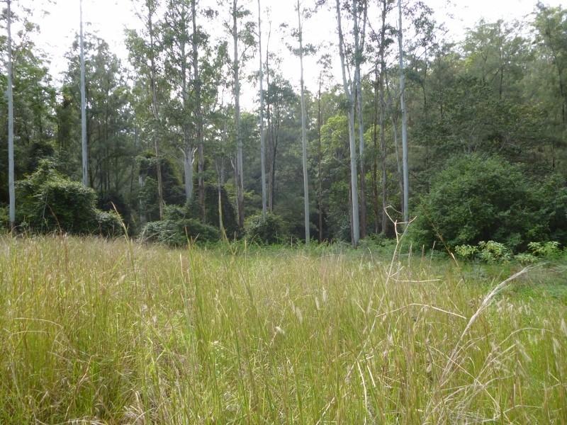 Lots 1-3 Nulla Nulla Creek Road, Bellbrook NSW 2440