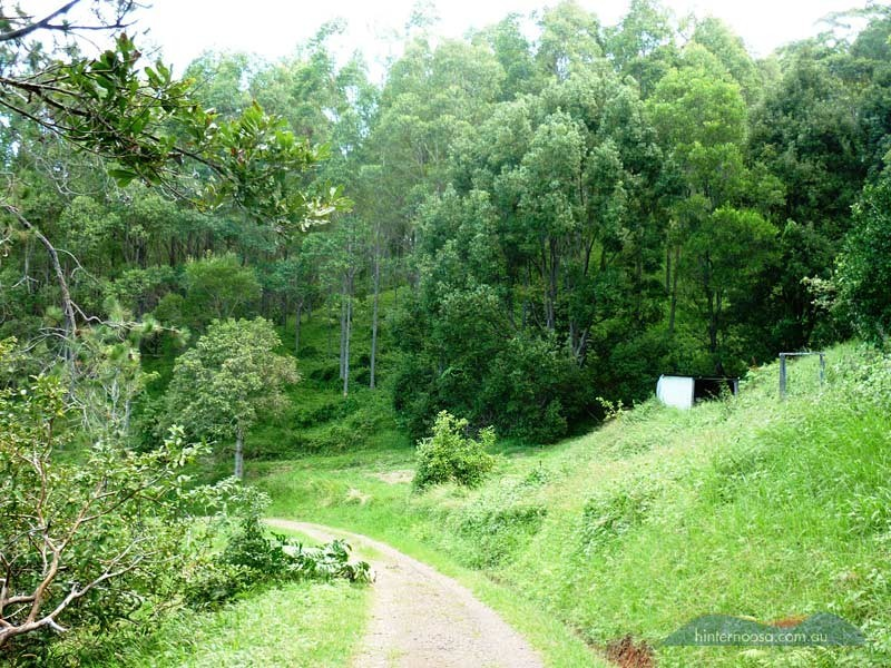 210 Musa Vale Rd, Cooroy QLD 4563