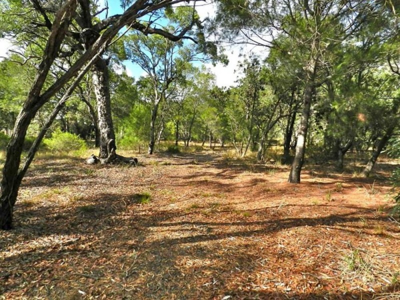 Lot 22 Bloodwood Avenue, Agnes Water QLD 4677
