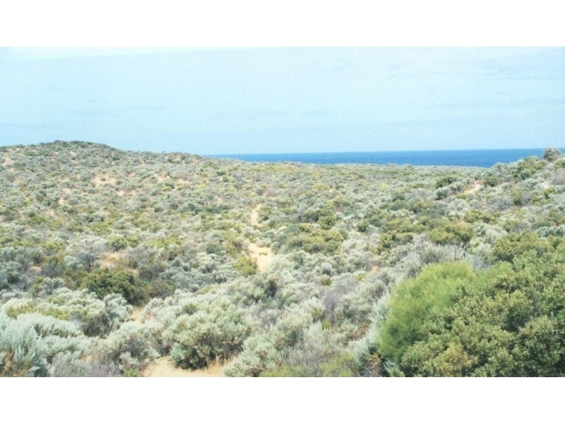 Sec 54 Hdrd of Ulipa, Mount Drummond SA 5607